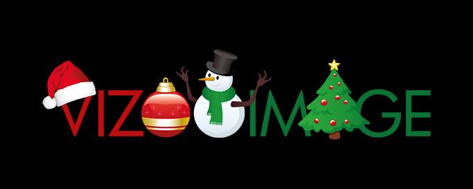 vizoo-image-logo-2015-web